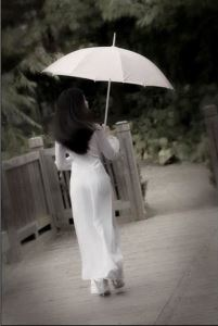 aodai5-large-content